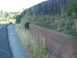 Retaining Wall BEFORE